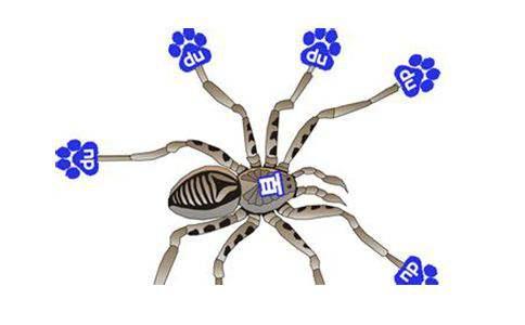 百度Baiduspider抓取网页链接有哪些策略