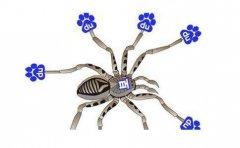 百度蜘蛛(Baiduspider)的抓取原理你知多少?